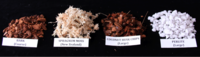 Potting Mixes: A variety of different potting media and mixes can be used to successfully grow orchids.